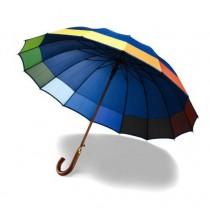 Regenboog Paraplu 2